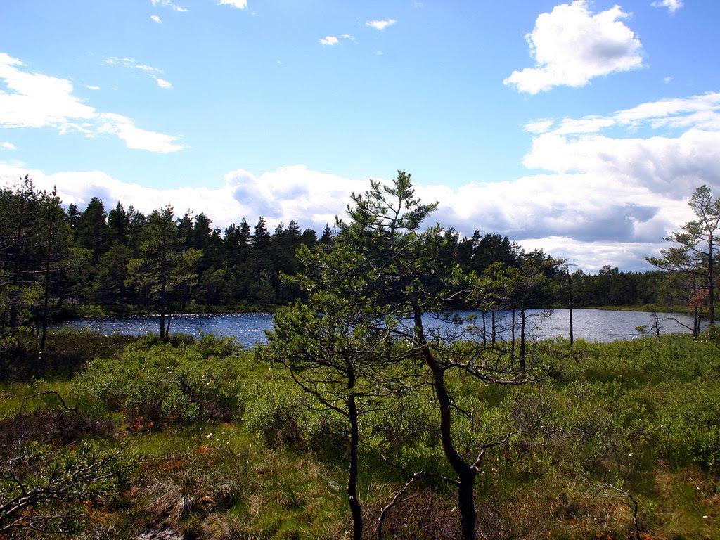 Lake Tornberga