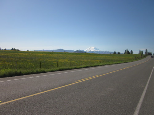 Mt Rainier from the north