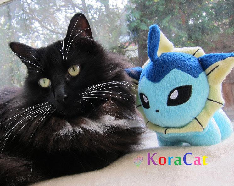 KoraCat-Icon