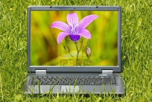 Capas para Facebook - Flores