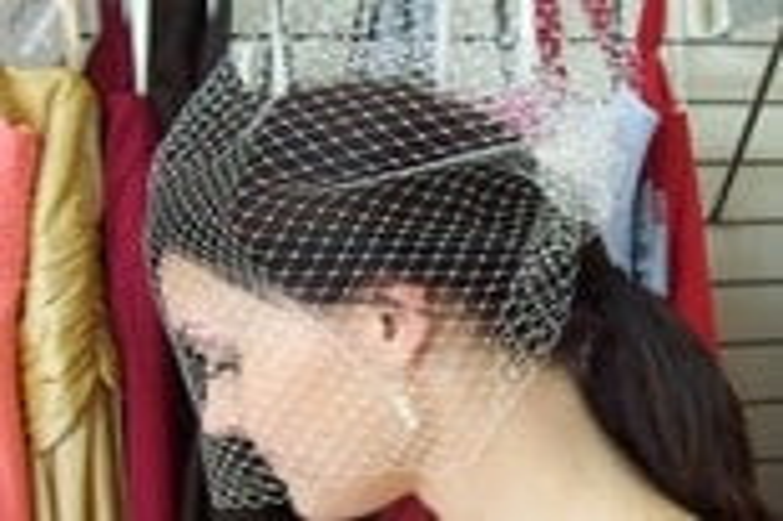The CASEY BirdCage Veil