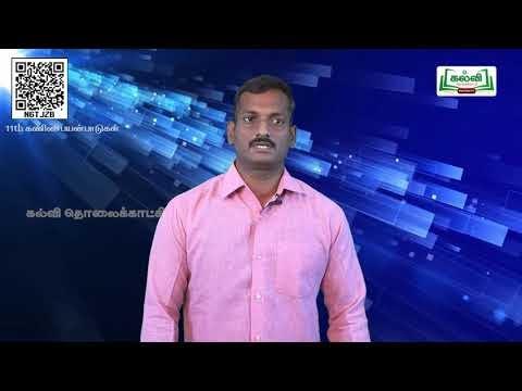 11th Computer Applications பல்லூடகக்கூறுகள் மற்றும் படிவங்கள் இணைத்தல் பகுதி 2  அலகு 12 Kalvi TV