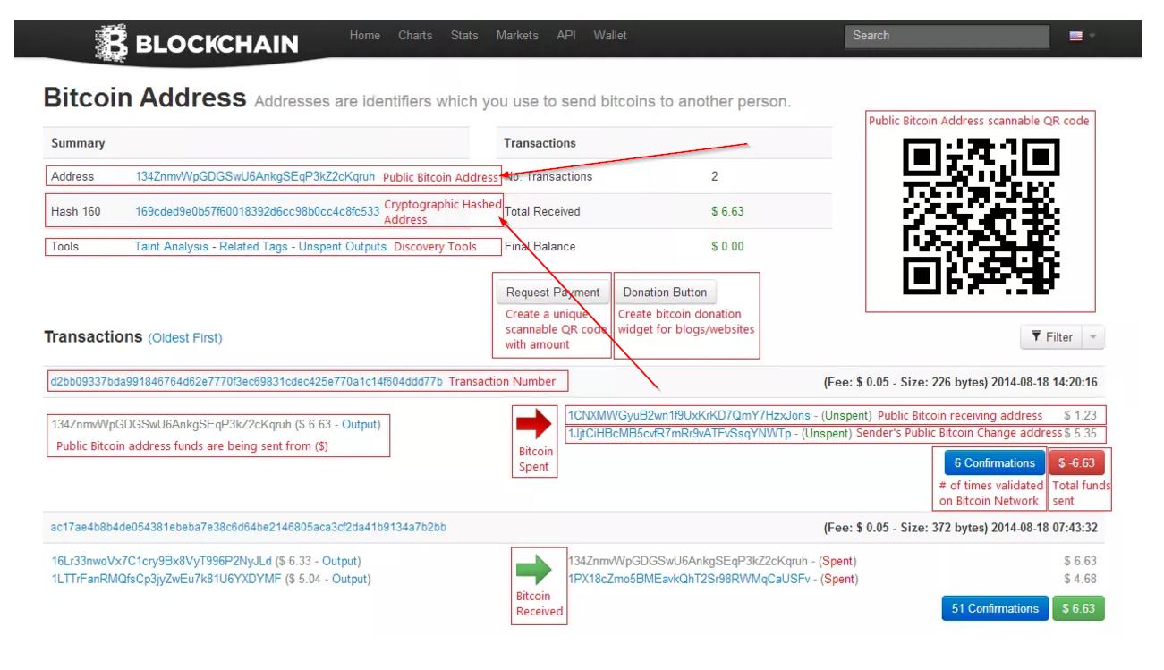 bitcoin loophole account