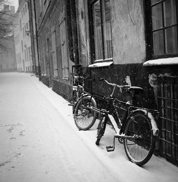 black and white pictures. Stuning Black And White Photo