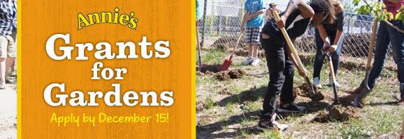 Grants for gardens