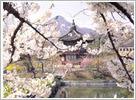 korea weather spring