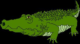 Image result for crocodile clip art