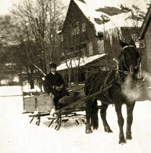 Grampa's Horse