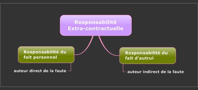 نتيجة بحث الصور عن la responsabilité civile extracontractuelle