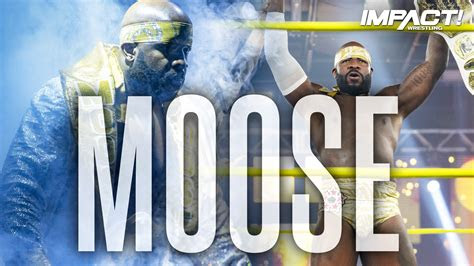 mooses  theme song entrance video impact wrestling