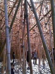 Doug and Mike Starn - Big Bambú