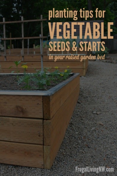 Planting tips for vegetable seeds and starts