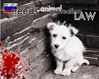 Unpunished Shocking Animal Murders In Russia