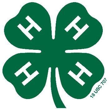 4 H Clover Coloring Pages