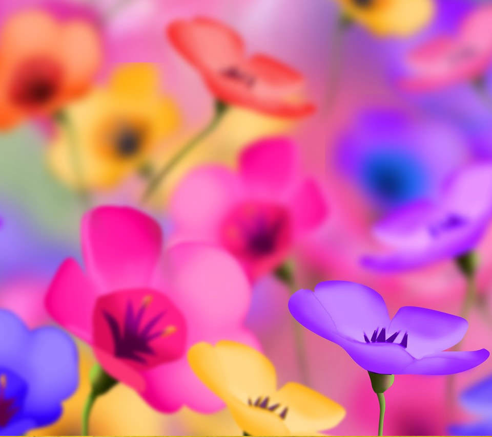 カラフルで綺麗な花のスマホ用壁紙 Android用 960 854 Wallpaperbox