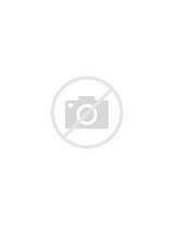 Avocado Black Bean Salad Images