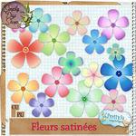 prettyju_cu_flsatinees_pv600_1bbe3c1