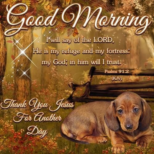 Good Morning Thank You Jesus For Another Day Pictures Photos And