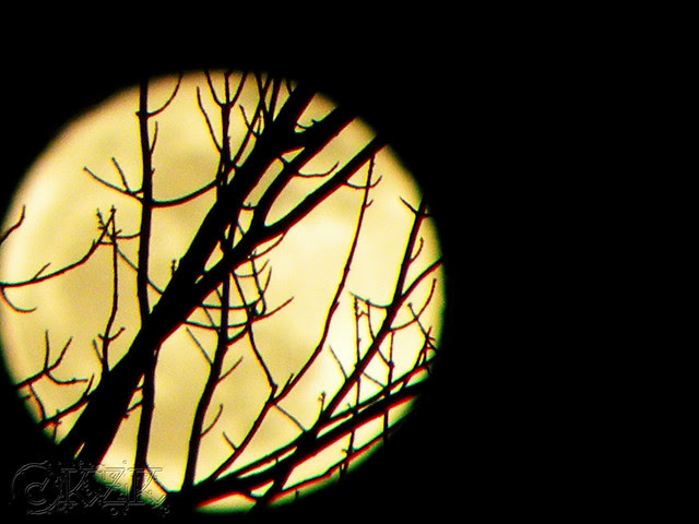 DSCN2929 9 JAN 12 full moon