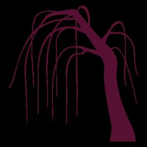 柳 花植物イラスト Flode Illustration フロデイラスト
