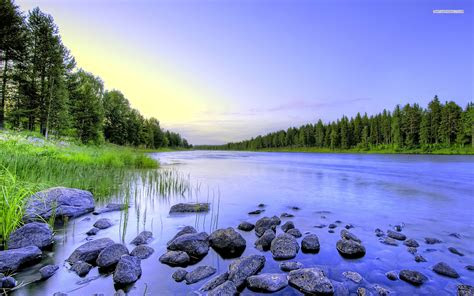 calm river forest grass stones wallpapers calm river
