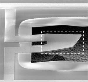 Mecânica quântica aplica-se ao movimento de objetos macroscópicos