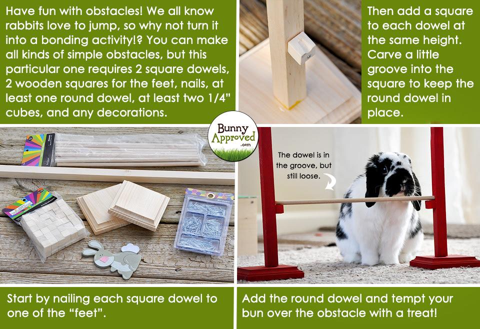 Diy Rabbit Toy Ideas Bunny Approved House Rabbit Toys Snacks