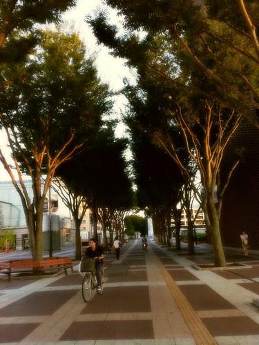 Girl cycling past trees at Tsukuba Center