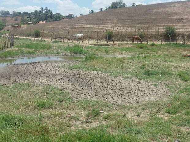 Reservatórios estão secando no município de Cedro de São João (Foto: Anderson Barbosa)