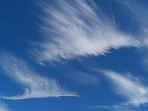 Dragon-clouds6