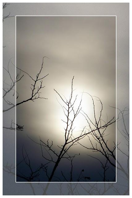 Vermont Winter Sky