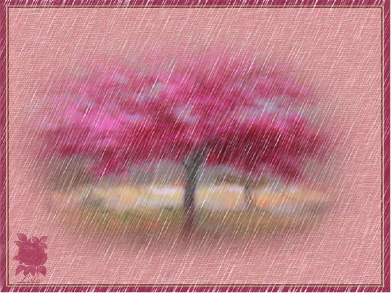 dias de lluvias