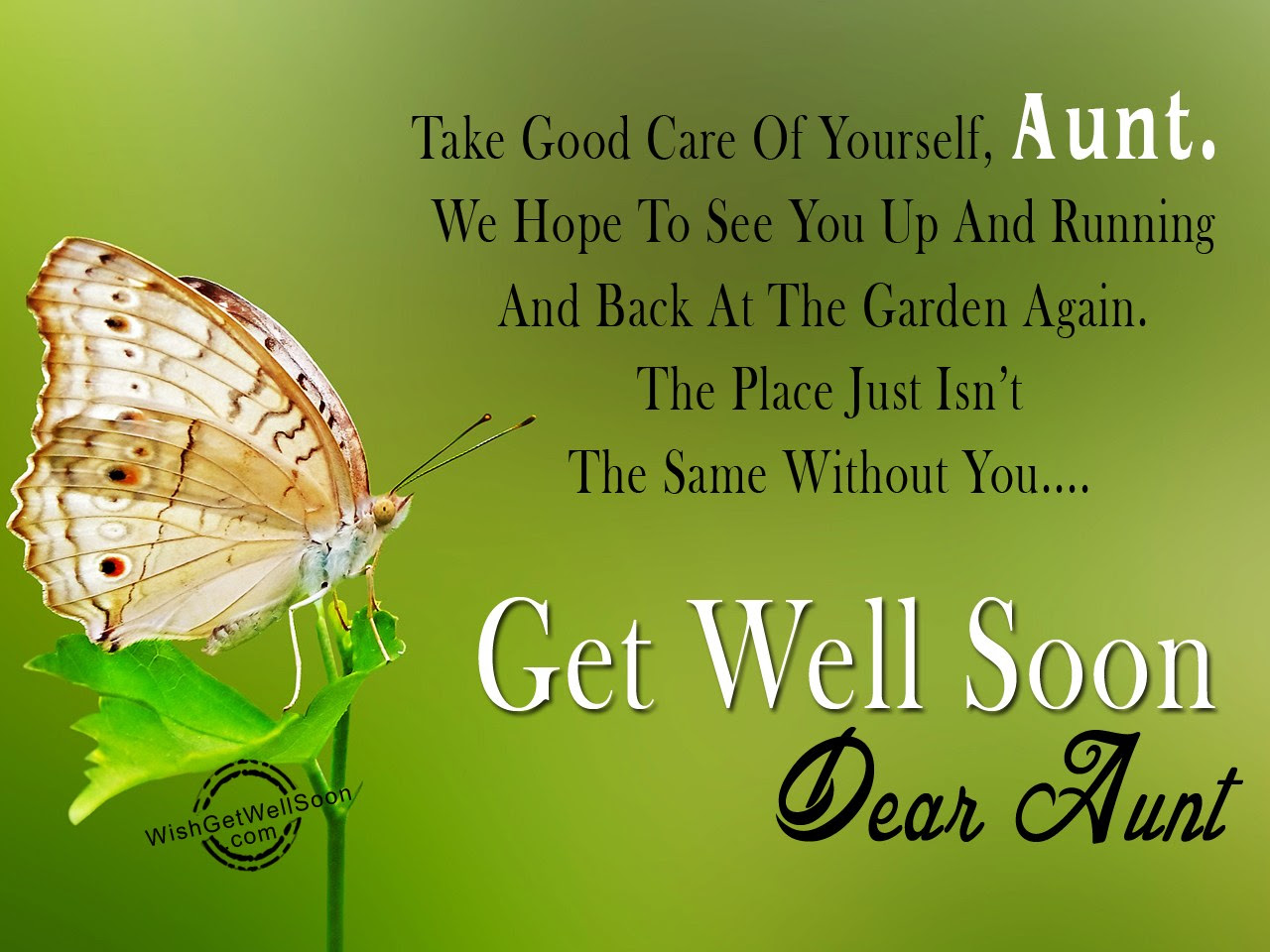 Take Good Care Of Yourself Aunt Get Well Soon