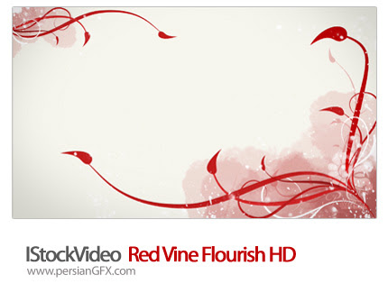 دانلود فایل آماده ویدئوی شکوفایی گل قرمز - IStockVideo  Red Vine Flourish HD