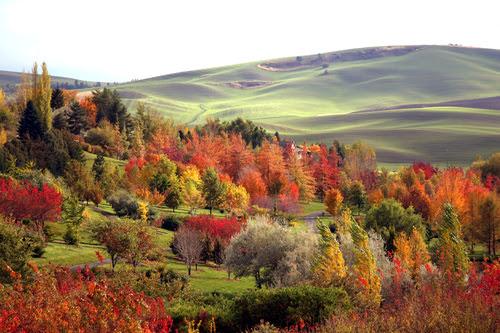 11 Gorgeous Scenic Photographs of Idaho