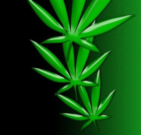 marijuana screensavers  wallpaper  wallpapersafari