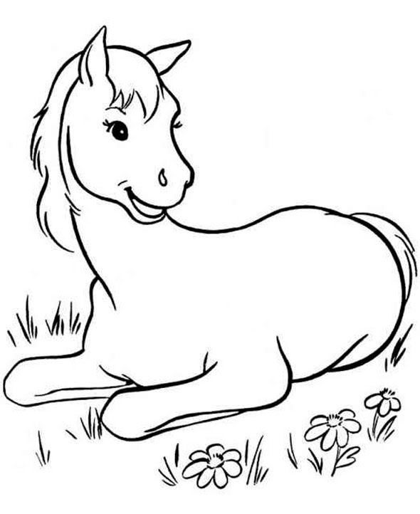 Ausmalbilder Pferde 10 Ausmalbilder Zum Ausdrucken