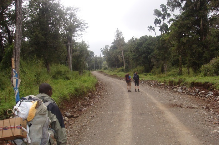 Trekking,Climbing Mount Kenya Base of Trekking Route Adventure