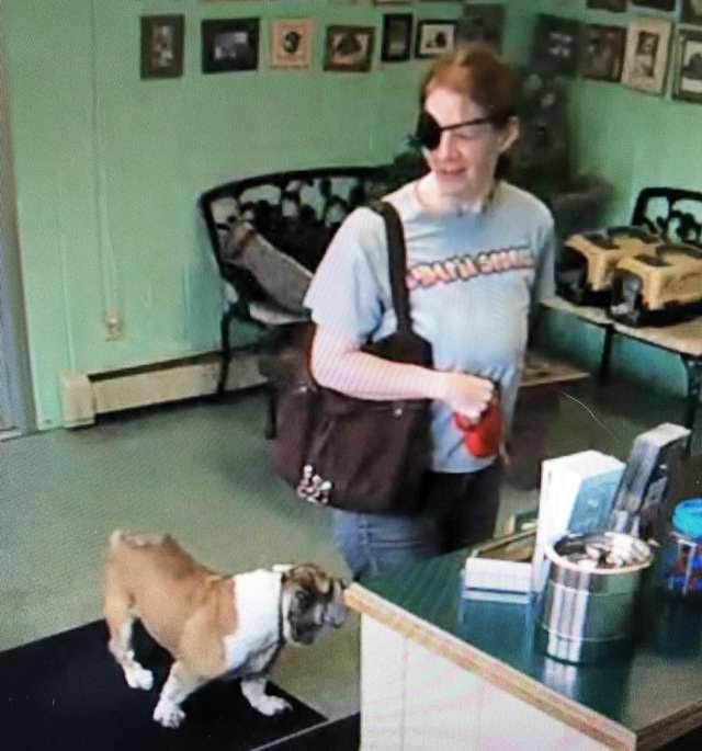 Una mujer lleva a un perro enfermo a una cita con el peluquero… Y nunca regresa por él