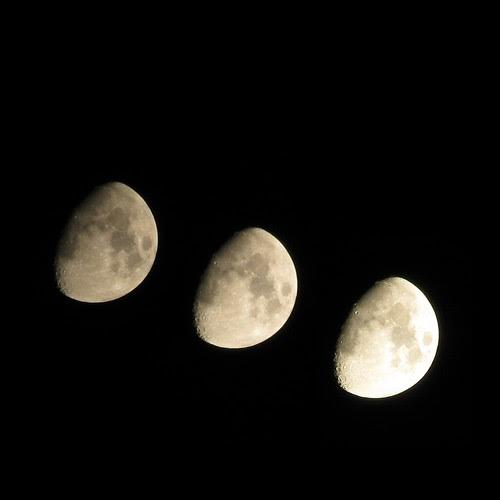 tre moon