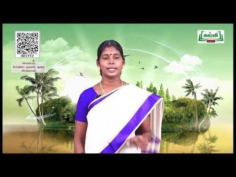 11th Zoology முதுகு நாணற்றவை பாடம் 2 அலகு 1 Kalvi TV
