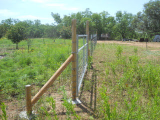 Looking Down the Gate & Fence Line