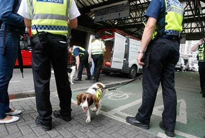 Police sniffer dogs at Waterloo railway station: Extra security at train stations amid terror attack fears