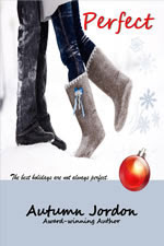 Perfect Christmas Story