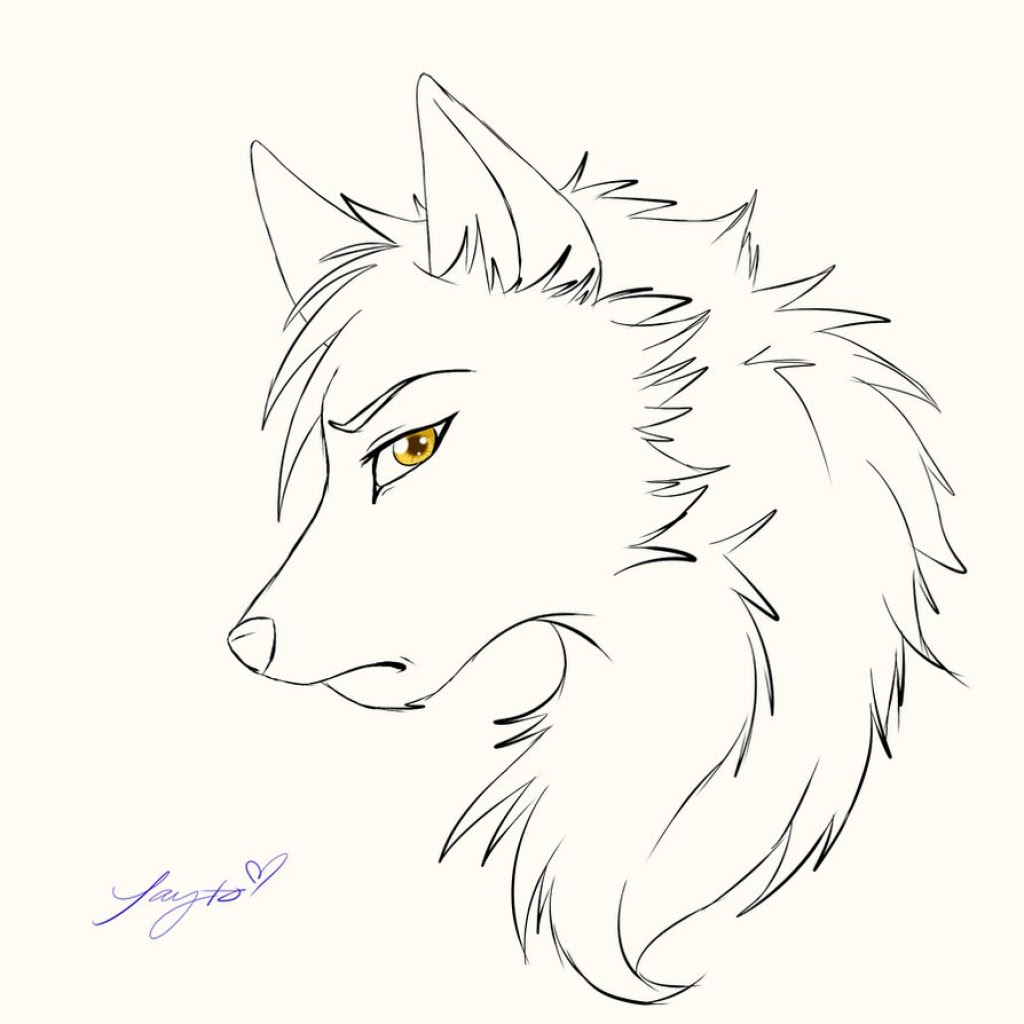 Trends For Anime Sad Wolves Drawings Wallpaper