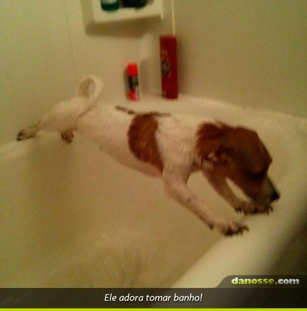 Ele adora tomar banho!