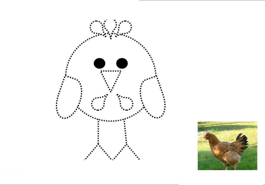 Okul Oncesi Cizgi Ve Boyama Sayfasi Hayvanlar 13 Okul öncesi