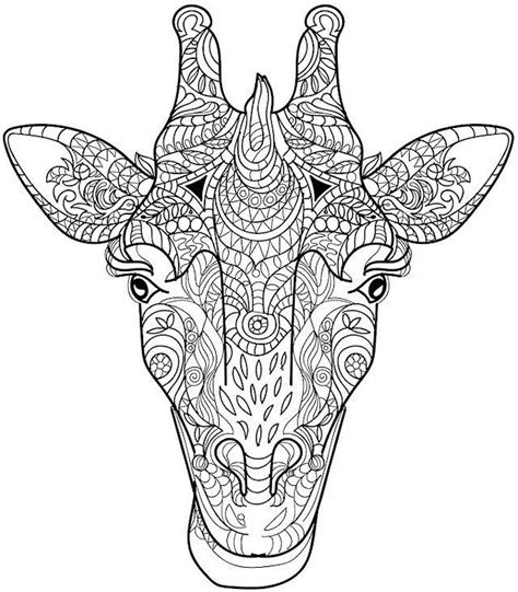animal coloring pages  adults giraffe head