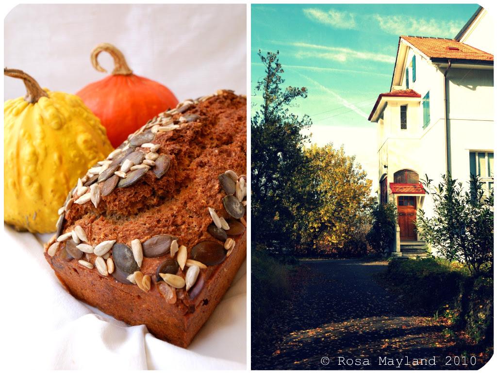 Norwegian Bread Picnik collage 3 bis