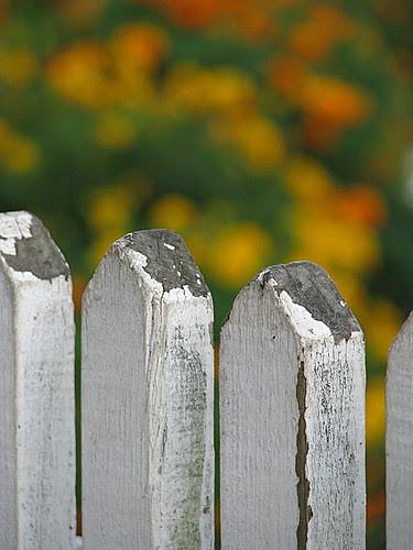 Garden pickets